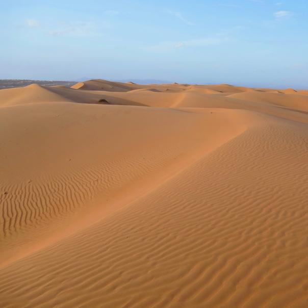 Wahiba, Wahiba Sands, Wüste, Oman, Dünen, Desert Nights Camp, Desert