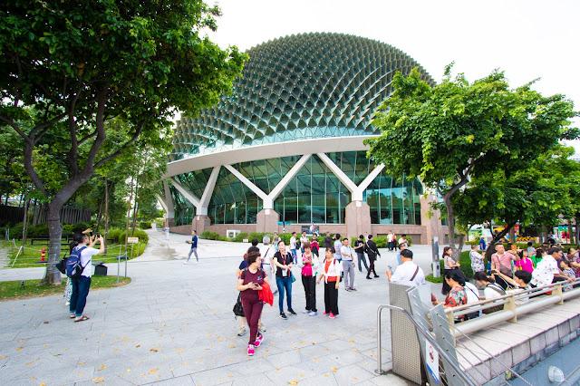 Durian-Singapore