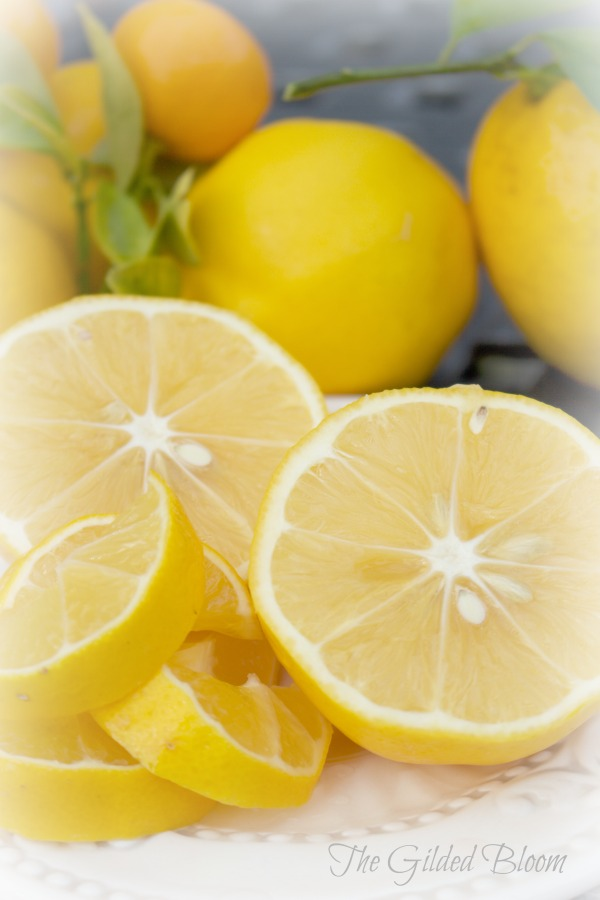 Lemons-Harvesting the Winter Garden-www.gildedbloom.com #gardening #citrus
