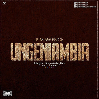 Download Audio | P Mawenge (P The Mc) - Ungeniambia