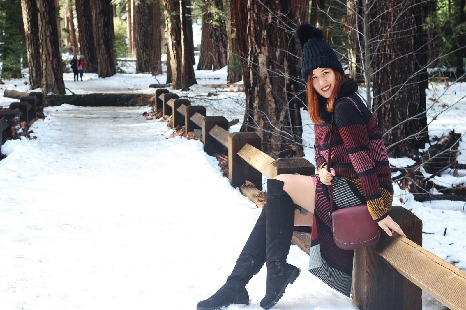 Yosemite Park en Invierno