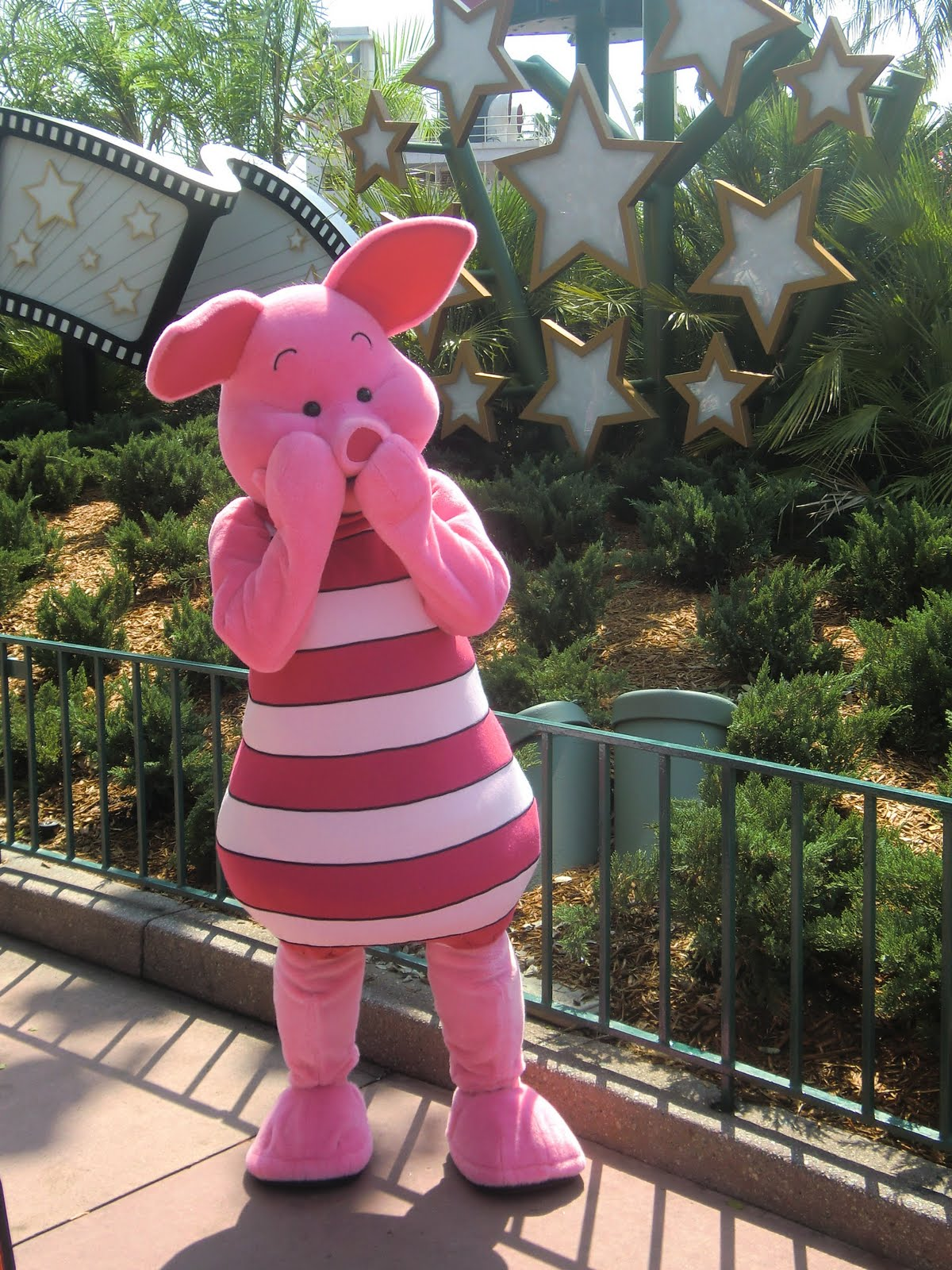 Unofficial Disney Character Hunting Guide Dhs Piglet