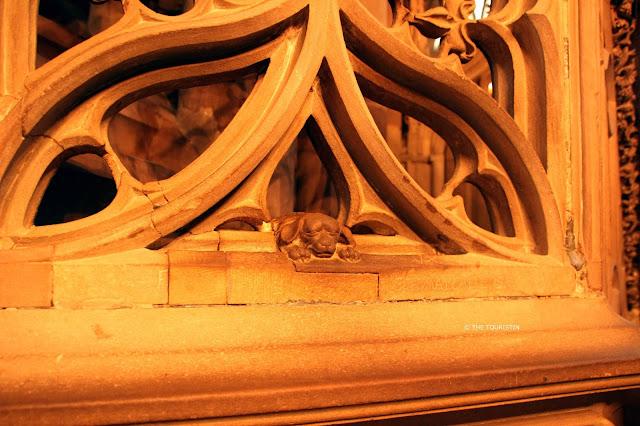 Dog at the Cathédral Notre-Dame de Strasbourg
