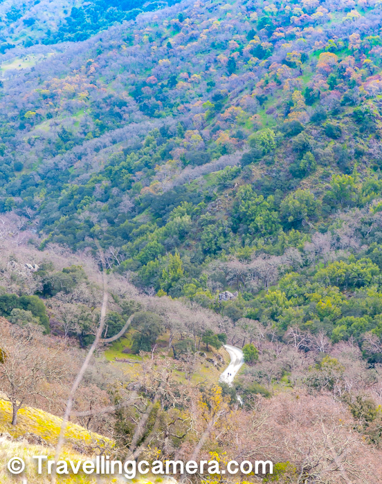 Above photograph shows the view of road from where we started and now we were descending from other side. I loved the colorful trees on the hills across the road.