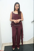 Nikki Galrani in a Brown Shining Sleeveless Gown at Nakshatram music launch ~  Exclusive 077.JPG