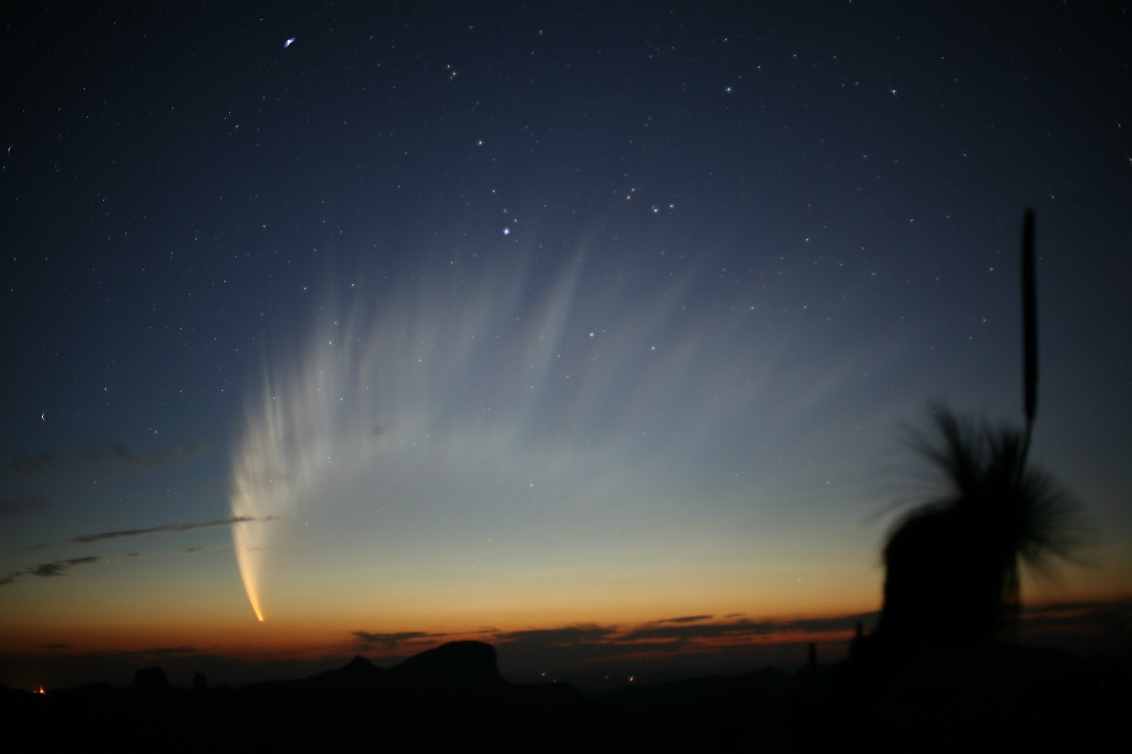 The Magnificent Tail Of Comet Mcnaught Earth Blog