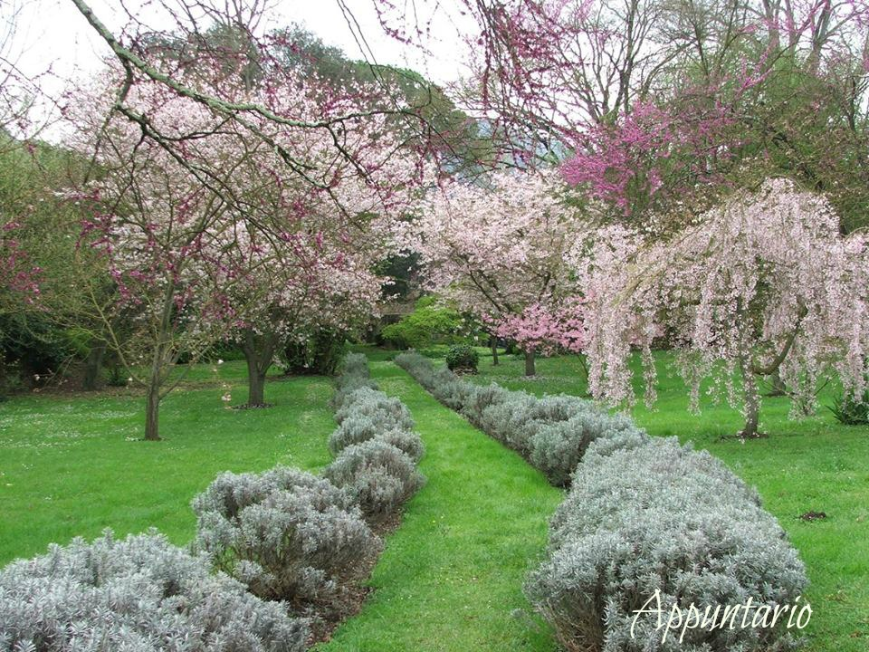 Appuntario il giardino di ninfa monumento naturale italiano - Il giardino di ninfa ...