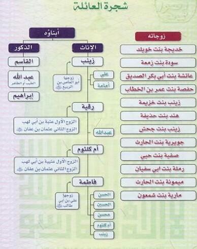 الثقافة العامة شجرة عائلة الرسول محمد ص زوجاته أولاده وبناته أحفاده