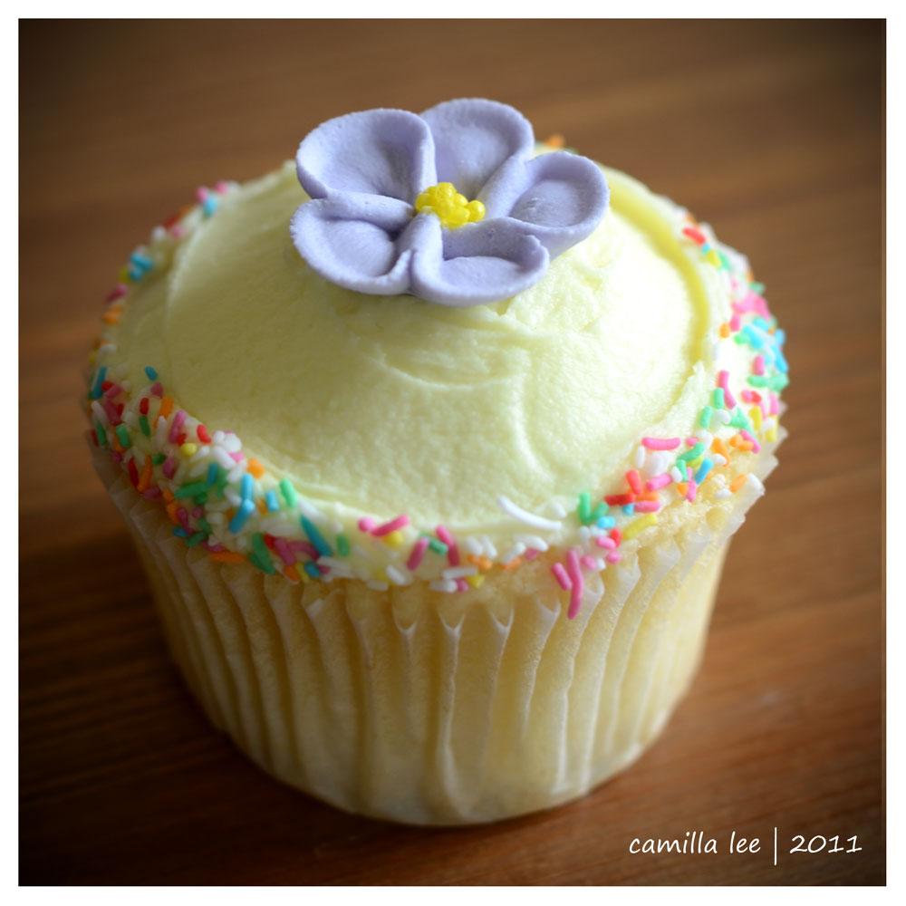A Whimsical Affair: Cupcake Decorating Class