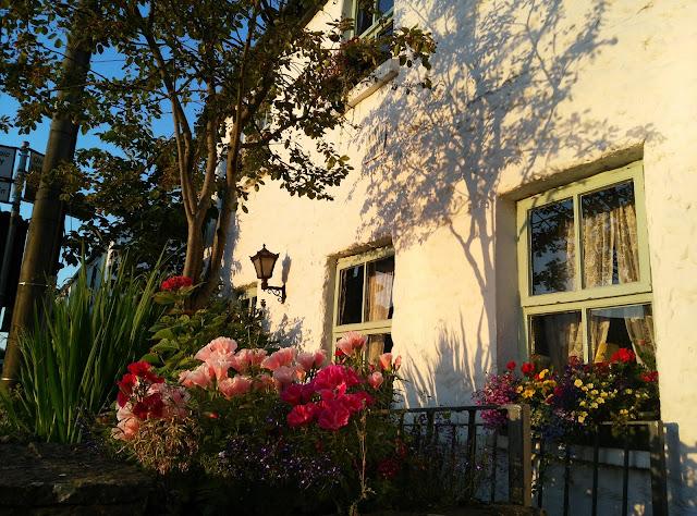 windows, flowers, sunrise, white gables