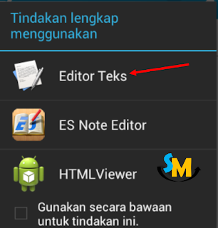 Editor Teks