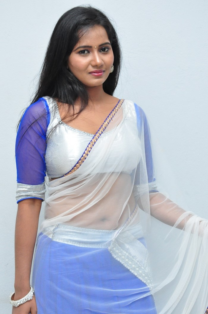 Transparent Saree: Saree Market: White Colour Transparent Saree Pictures