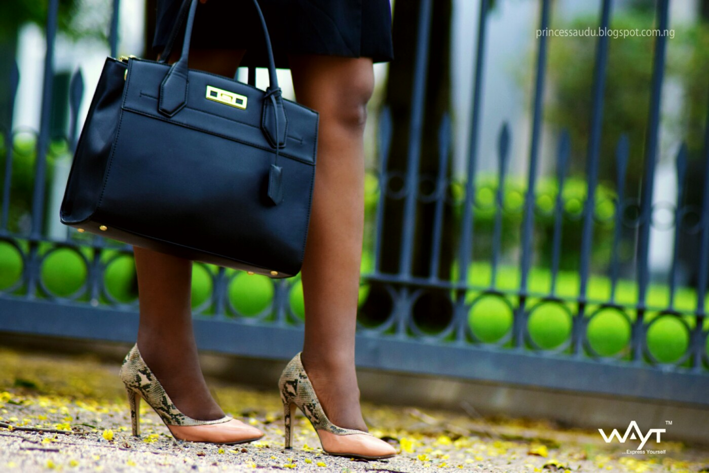 black bag, snake skin court pumps