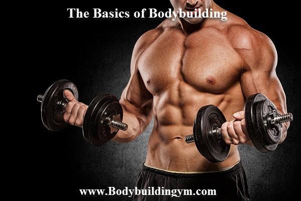 Bodybuilding terminology