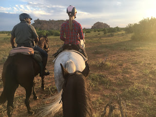 Botswana, ratsastussafari, Riitta reissaa, ratsastusmatkailu, Horsexplore