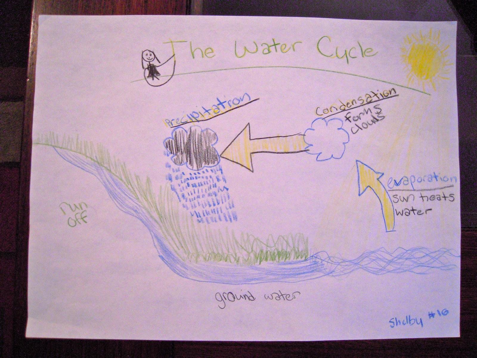 water cycle diagram worksheet to label 2002 honda civic si radio wiring mrs mcdonald 39s 4th grade the