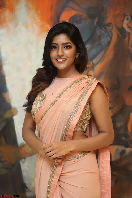 Eesha Rebba in beautiful peach saree at Darshakudu pre release ~  Exclusive Celebrities Galleries 006.JPG
