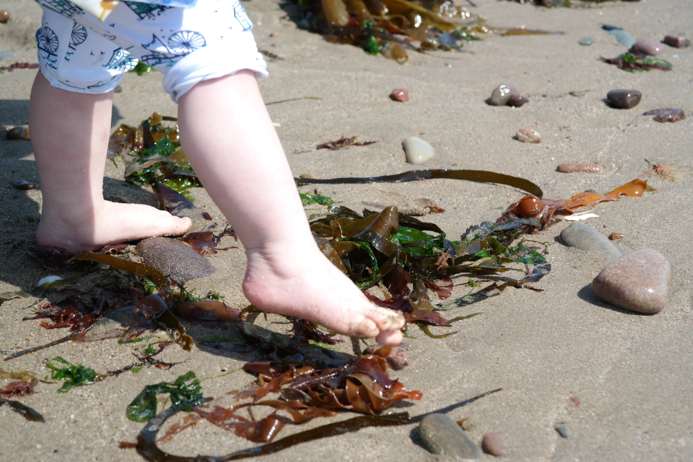 This Little Big Life: Feet in the seaweed