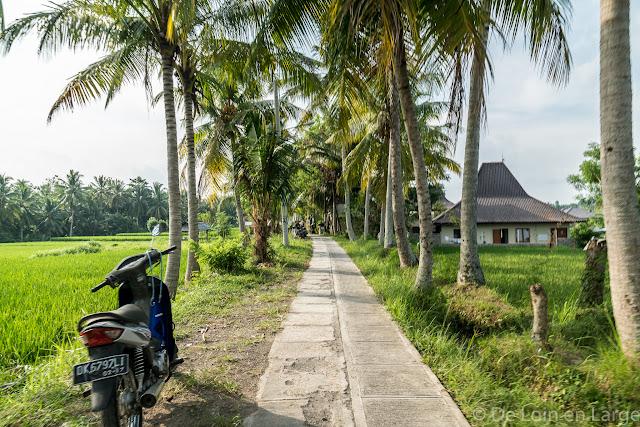 Jalan Bajeng - Ubud - Bali