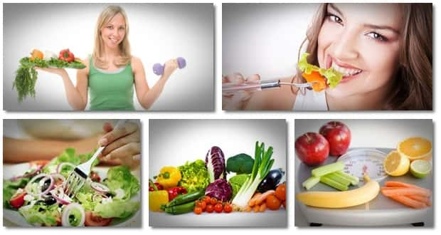 Focus on vegetarian diet