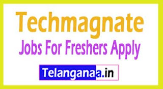 Techmagnate Recruitment 2017 Jobs For Freshers Apply