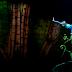 Cirque du Soleil - Las mejores fotos de Ovo