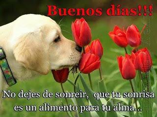 Frases de Buenos Dias Amor para facebook