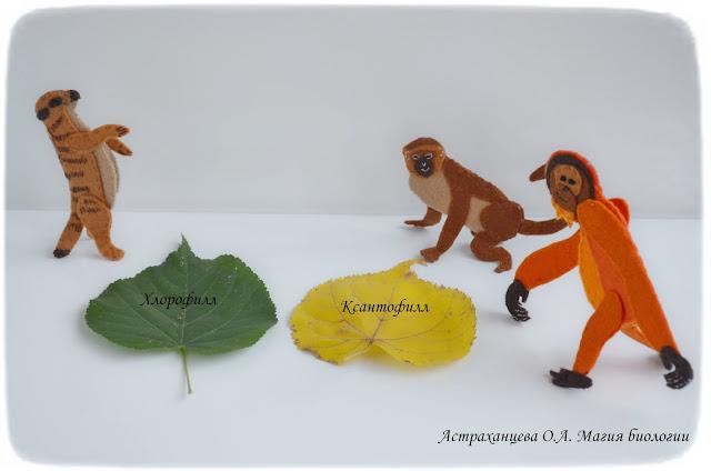 palchikovyj-teatr-martyshka-orangutan-surikat-osen-листья