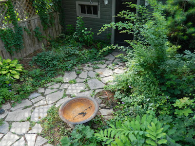 Leslieville Summer Backyard Garden Cleanup After by Paul Jung Gardening Services--a Toronto Gardening Company