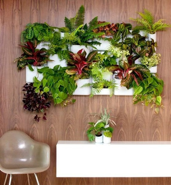 Benefits And Advantages of Vertical Gardens 5