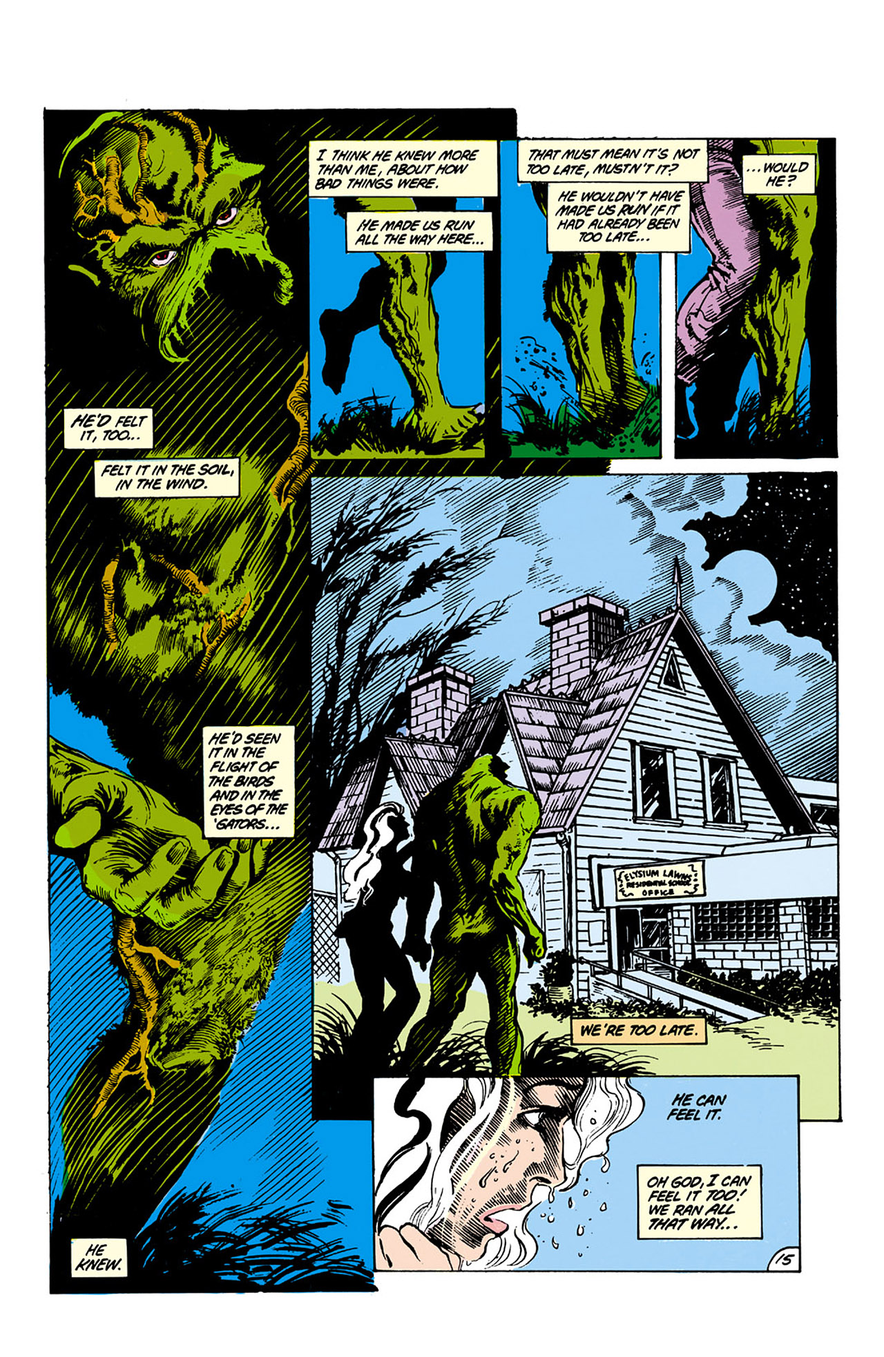 Swamp Thing (1982) Issue #26 #34 - English 15