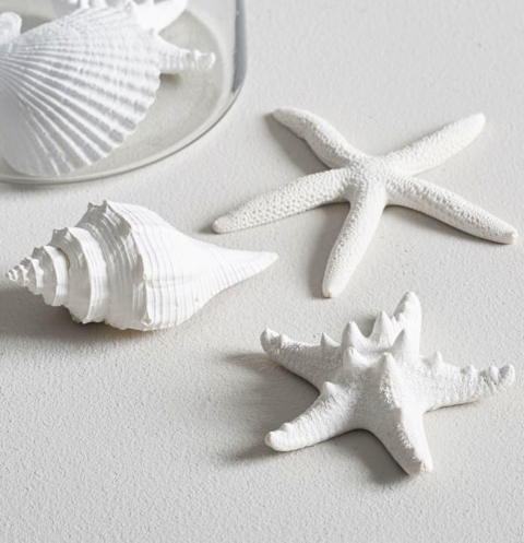 Starfish and Shell Vase Fillers
