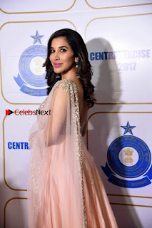Bollywood Actress Model Sophie Choudry Stills in a Beautiful Dress at The Annual Central Excise Day Celetion  0007.jpg