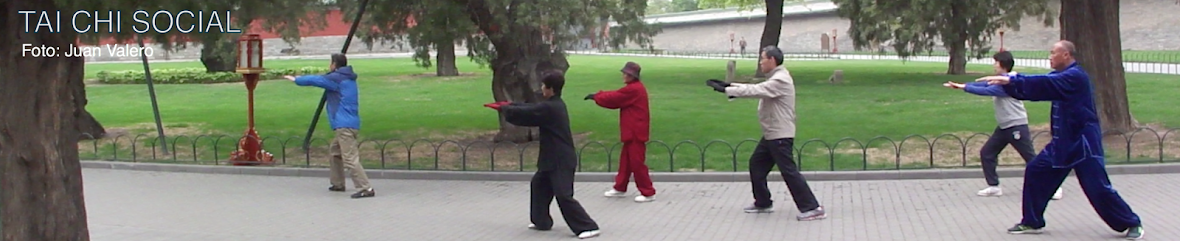 TAI CHI SOCIAL: Manual Técnico Yang Unificado