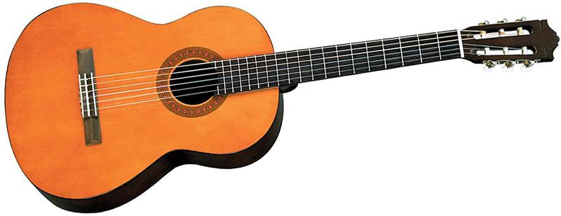 Dan Guitar Yamaha Acoustic