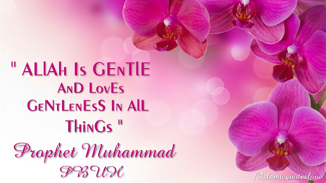 Allah is gentle and loves gentleness in all things. [ Prophet Muhammad PBUH ]