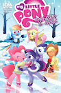 MLP Friendship is Magic #29 Comic Cover Retailer Incentive Variant
