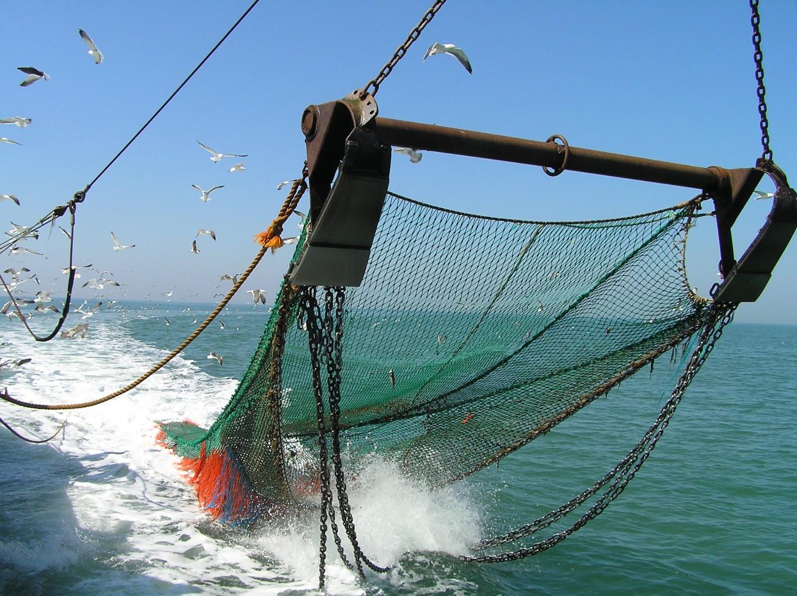 Resultado de imagen para La Pesca de Arrastre