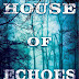 Review: House of Echoes by Brendan Duffy
