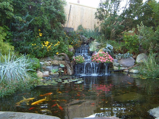 backyard oasis on a budget; backyard ideas; backyard landscaping ideas; backyard makeover; backyard paradise; backyard oasis landscaping ideas; backyard landscape designs; small yard landscaping; small backyard landscaping ideas; backyard landscaping ideas on a budget; backyard landscaping plans; backyard designs; Backyard  Landscaping Ideas, Backyard Landscape Designs, Backyard Oasis ideas, Backyard plant ideas, Backyard pond ideas, Backyard Waterfalls
