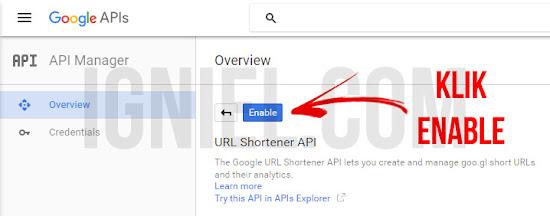 Membuat Short URL Otomatis Dengan Google API