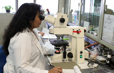 A picture of a researcher studying microscopic biological activity.