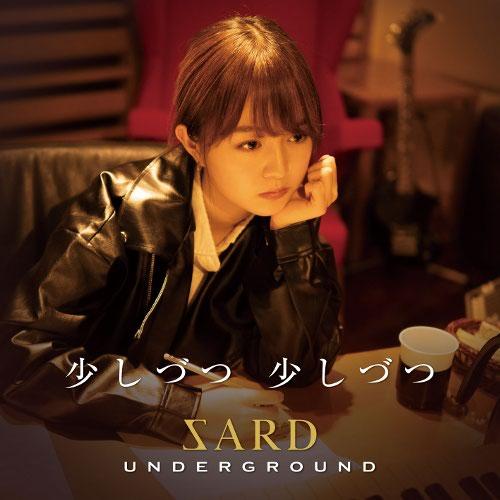 SARD UNDERGROUND - Sukoshizutsu Sukoshizutsu [FLAC   MP3 320 / CD]