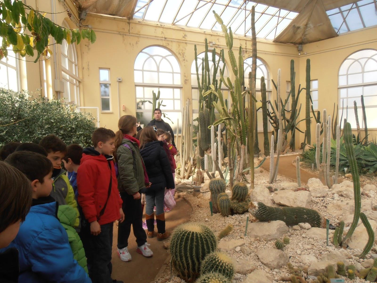 Ceip andaluc a c rdoba vista al huerto del jard n for Ceip jardin botanico