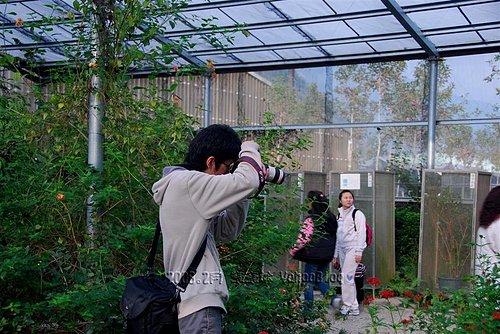 Nikon D80|Nikon單眼數位相機摸索學習
