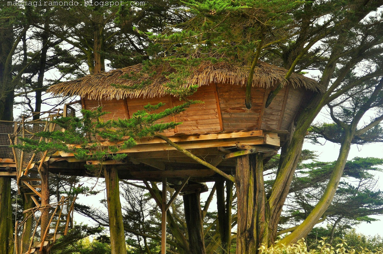 Dormire in una casa sull 39 albero in bretagna - Casa sull albero progetto ...