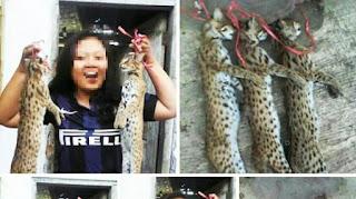 perburuan dan pembantaian satwa langka