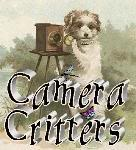 Sat: Camera Critters