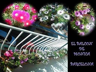 http://misqueridasventanas.blogspot.com.es/2015/06/las-ventanas-de-monica.html