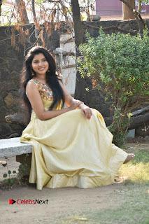 Actress Nayana Nair Stills in Long Dress at Arasakulam Tamil Movie Audio Launch  0010.jpg